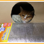 猫小屋の保温対策?
