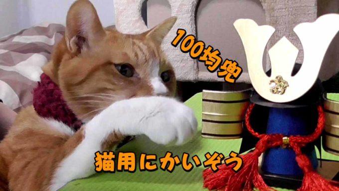 100均兜猫用に改造