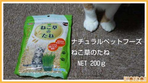 ナチュラルペット 猫草