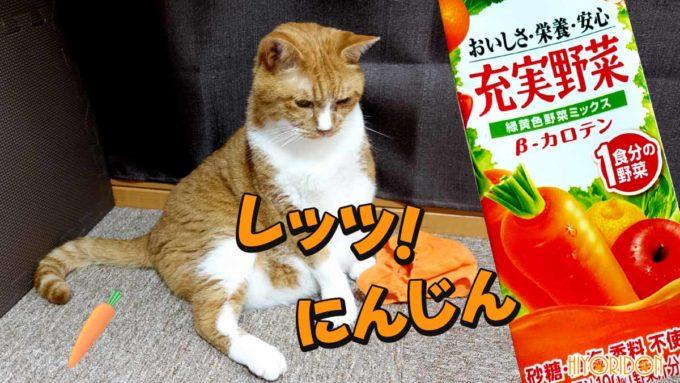 第17弾ねこ野菜ちゃん!の「にんじん」を装着