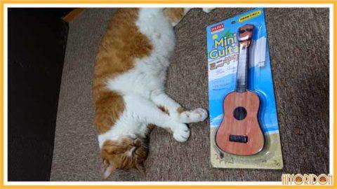 ダイソーのミニギター