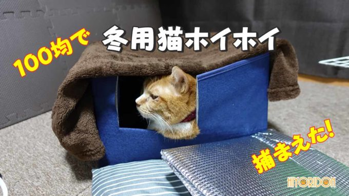 冬用猫ホイホイ