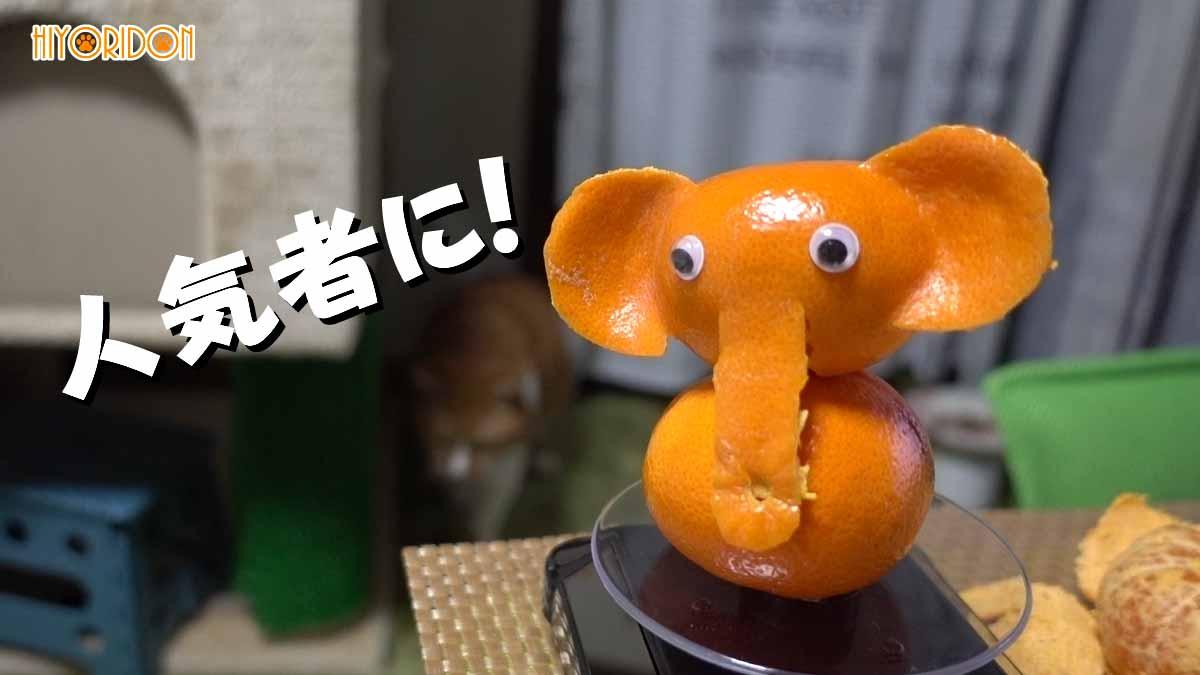 みかんで象作成で人気者