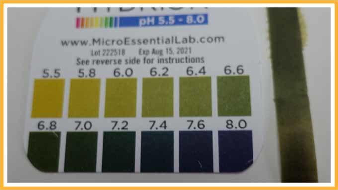 pH検査結果