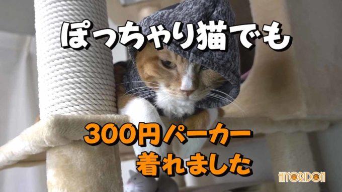 ダイソーの300円パーカー